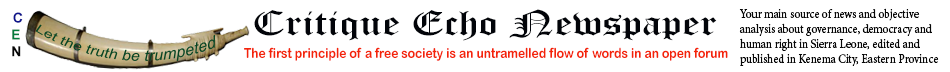 Critique Echo Newspaper
